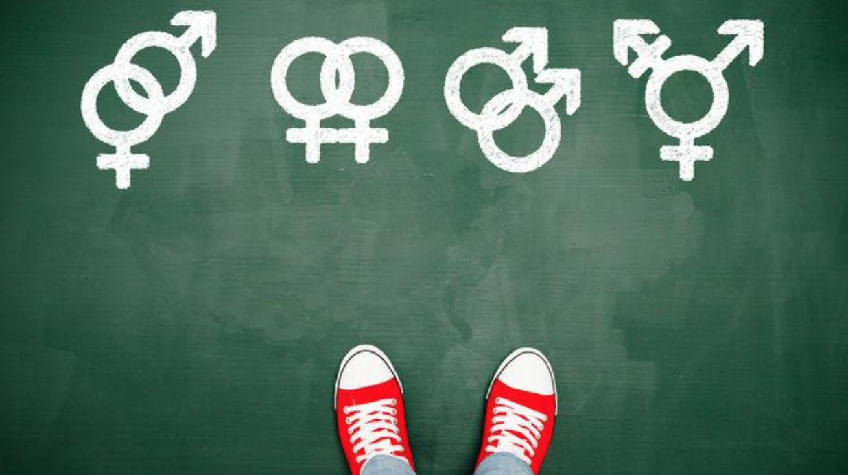 Ideología de Género FARC
